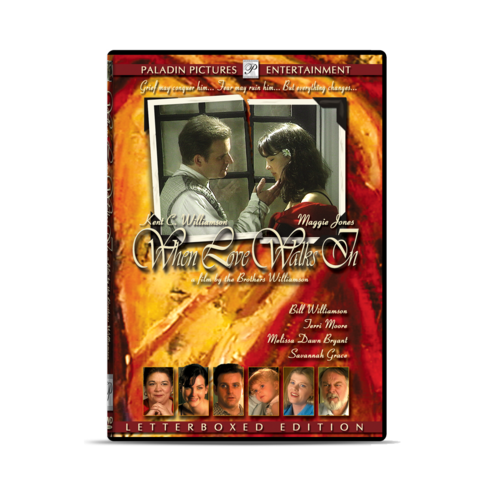 When Love Walks In - DVD